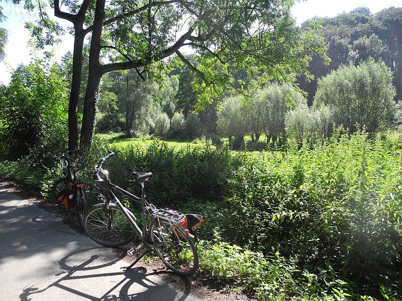 09-birgit_evertz-titel buschfeld